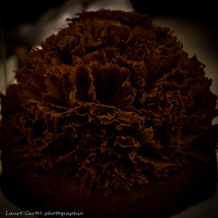 Rose de chocolat
