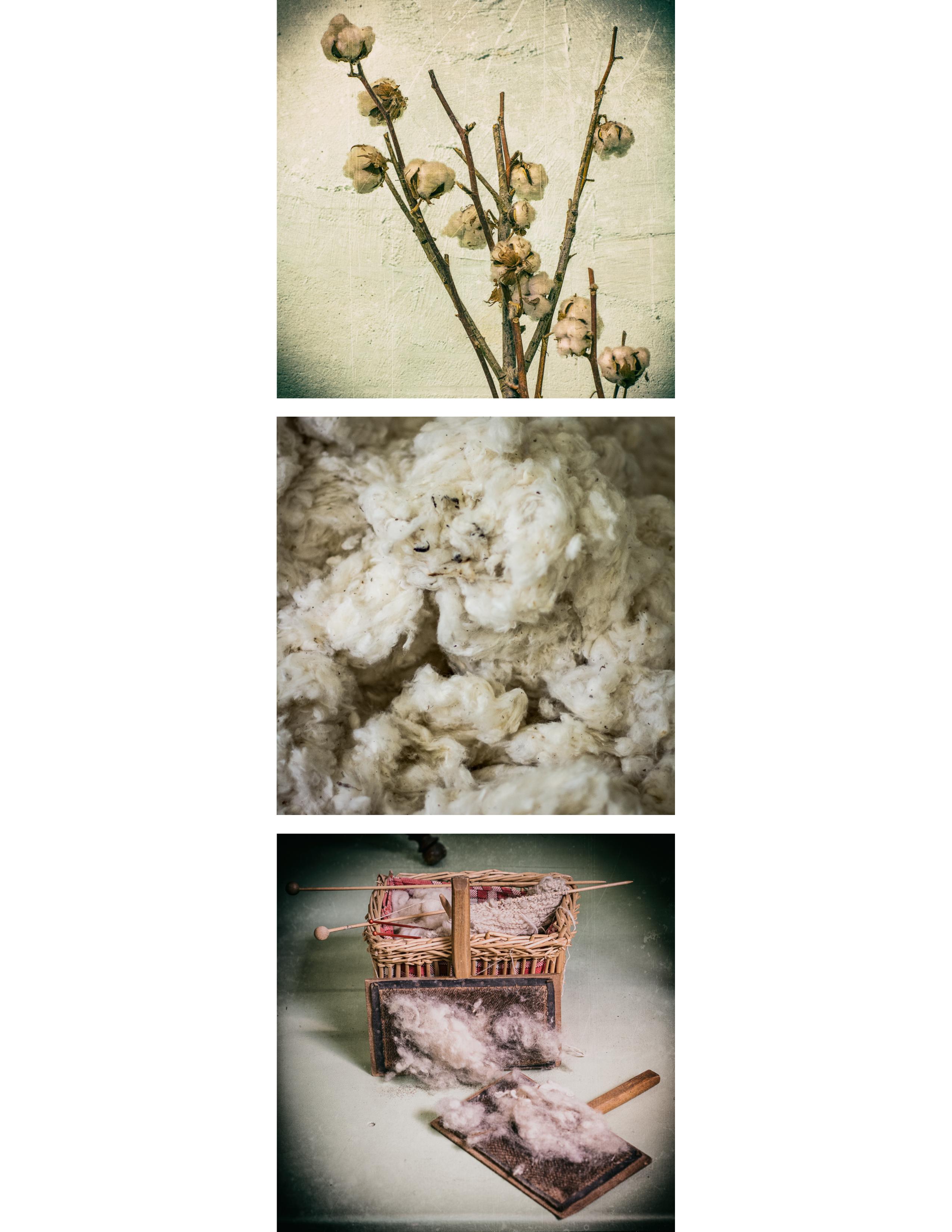 Série coton
